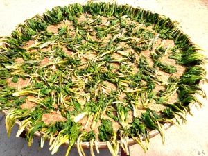 some boo choy spread out to dry