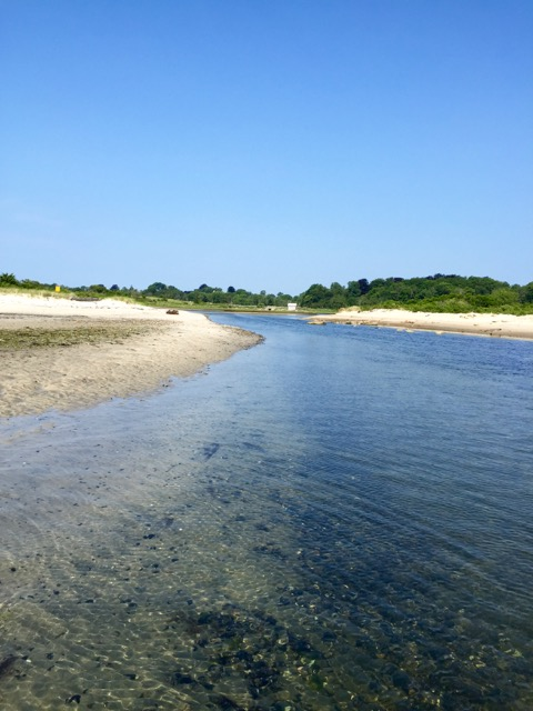 a backside inlet perfect for wading among the sealife