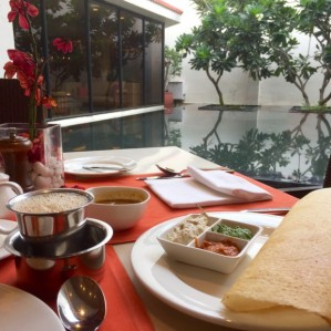 breakfast in Chennai, complete with dosa, chutney, south indian coffee, and a tranquil view out the restaurant window, insulated from real life on the street