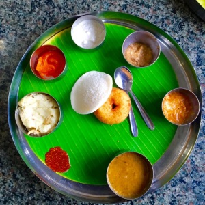 a sampling of various chutneys a local restaurant Annapoorna (goddess of food) in Coimbatore