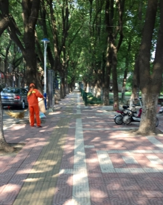 no shortage of sidewalk and park sweepers