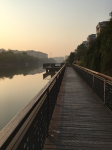 along one of the canals this morning