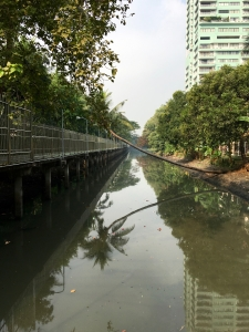On the wooden bridge looking down the canal with adjacent greenway